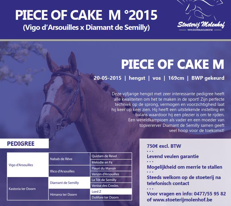piece_of_cake_m_voorwaarden.png